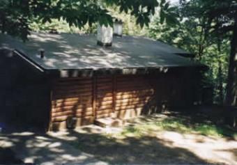 Sommerstimmung mitten im Neckarwimmersbacher Wald