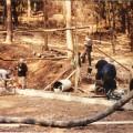 Versorgung mit Zement im Wald